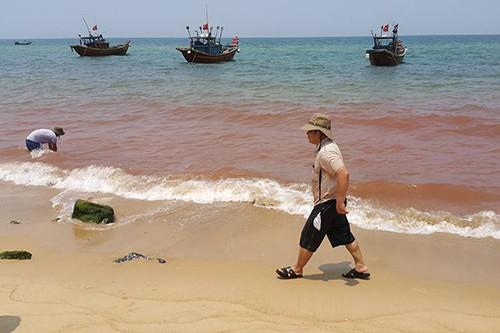 Xuất hiện vệt nước đỏ 1,5 km sát bờ biển Quảng Bình - ảnh 1