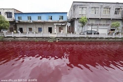 Hoảng hốt với những dòng sông bất ngờ hóa đỏ - ảnh 4