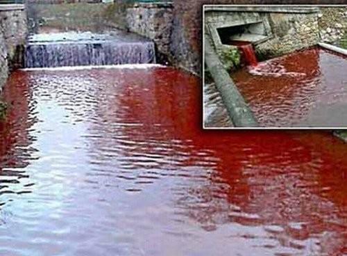 Hoảng hốt với những dòng sông bất ngờ hóa đỏ - ảnh 7