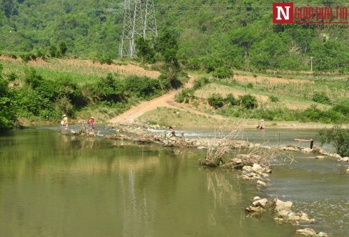 Thanh Hóa: Nước sông đổi màu, cá chết hàng loạt dạt vào bờ  - ảnh 2