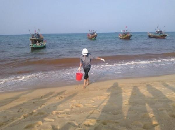Thuê thợ lặn tìm hiểu nơi phát hiện cá chết xếp lớp dưới đáy biển - ảnh 2