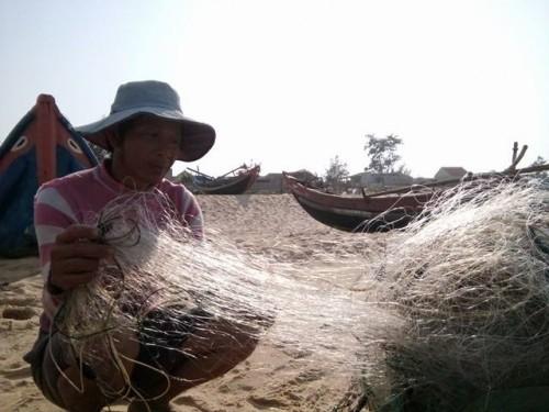 Thuê thợ lặn tìm hiểu nơi phát hiện cá chết xếp lớp dưới đáy biển - ảnh 1