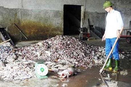 Formosa nhập 384 tấn hóa chất là đúng quy định - ảnh 1