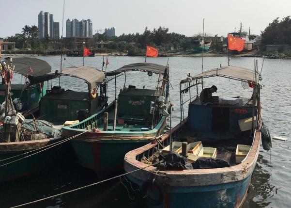 Ngư dân Trung Quốc được trả 20.000 USD cho mỗi lần ra khơi? - ảnh 1