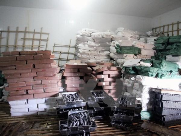 Quảng Trị niêm phong 25 tấn cá nục bị nhiễm chất Phenol - ảnh 1