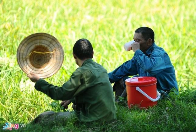 Nắng nóng kéo dài, Chủ tịch Hà Nội ra công điện ứng phó - ảnh 1