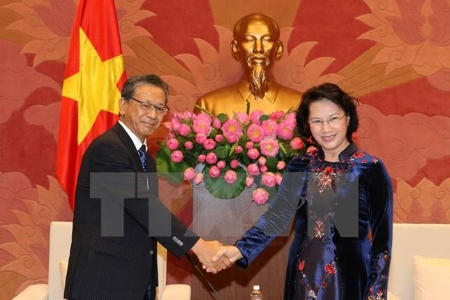 Quốc hội Việt Nam sẽ tăng giám sát, bảo đảm nguồn vốn ODA - ảnh 1