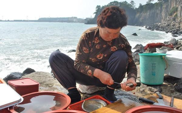 Khám phá đảo Jeju qua những món ăn dân dã - anh 2