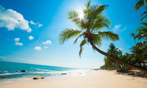 Những điểm du lịch tuyệt nhất Việt Nam trên báo nước ngoài - anh 7