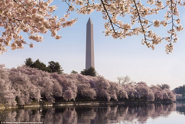 Những điểm đến đẹp nhất thế giới vào mùa xuân - anh 12