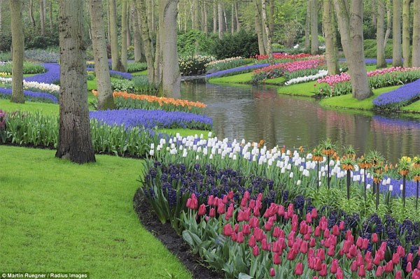 Những điểm đến đẹp nhất thế giới vào mùa xuân - anh 2