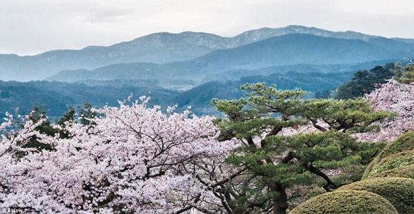 Những điểm đến đẹp nhất thế giới vào mùa xuân - anh 3