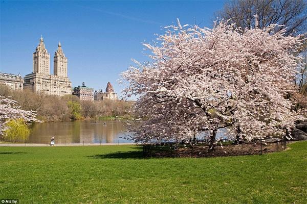 Những điểm đến đẹp nhất thế giới vào mùa xuân - anh 7