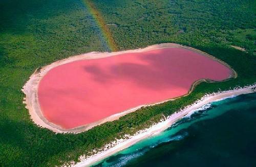 Những bí mật ngạc nhiên về hồ nước màu hồng ở Úc - anh 1
