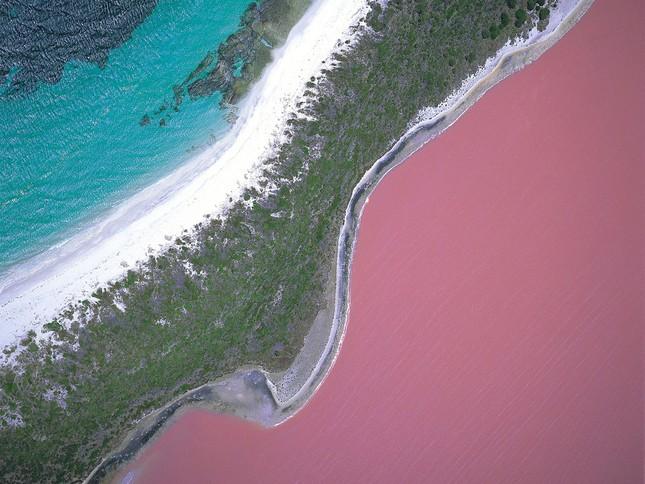 Những bí mật ngạc nhiên về hồ nước màu hồng ở Úc - anh 2