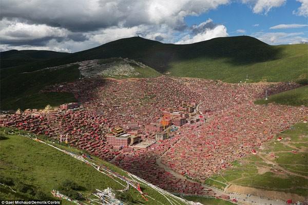 Học viện Phật giáo: 40.000 tăng ni không được xem tivi - anh 1