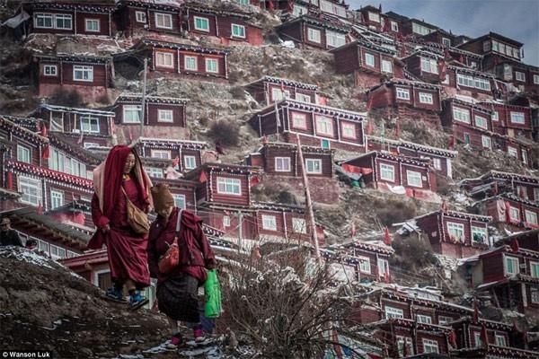 Học viện Phật giáo: 40.000 tăng ni không được xem tivi - anh 8