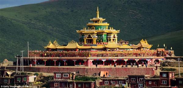 Học viện Phật giáo: 40.000 tăng ni không được xem tivi - anh 10