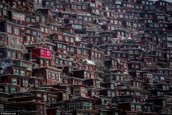 Học viện Phật giáo: 40.000 tăng ni không được xem tivi - anh 2