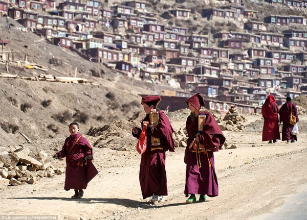 Học viện Phật giáo: 40.000 tăng ni không được xem tivi - anh 13