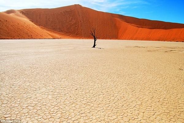 Chiêm ngưỡng điểm quay phim tuyệt đẹp của 'Mad Max: Fury Road' - anh 7