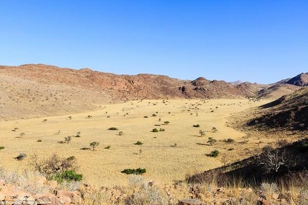 Chiêm ngưỡng điểm quay phim tuyệt đẹp của 'Mad Max: Fury Road' - anh 4