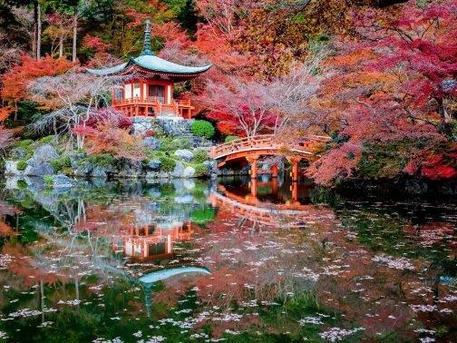 Chiêm ngưỡng những bức ảnh chỉ nhìn thôi đã muốn tới ngay Nhật Bản - anh 1