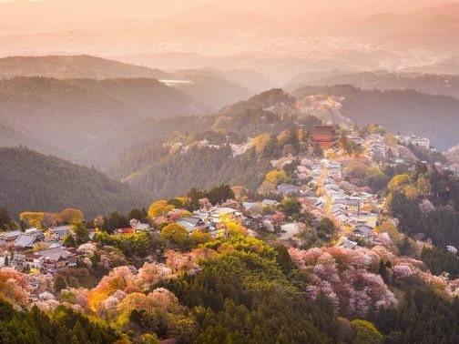 Chiêm ngưỡng những bức ảnh chỉ nhìn thôi đã muốn tới ngay Nhật Bản - anh 5