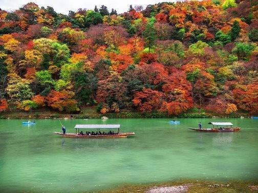 Chiêm ngưỡng những bức ảnh chỉ nhìn thôi đã muốn tới ngay Nhật Bản - anh 7