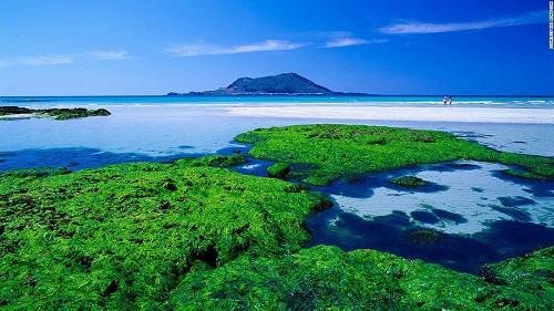 15 cảnh đẹp mê hồn ở Hàn Quốc - anh 11