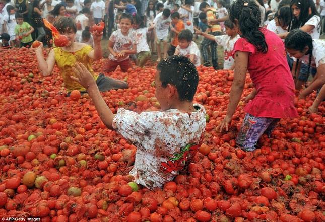 Những hình ảnh đẹp của lễ hội cà chua ở Colombia - anh 1