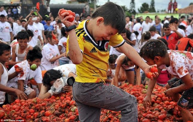 Những hình ảnh đẹp của lễ hội cà chua ở Colombia - anh 3