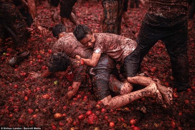 Những hình ảnh đẹp của lễ hội cà chua ở Colombia - anh 2