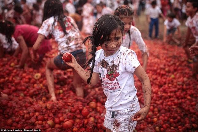 Những hình ảnh đẹp của lễ hội cà chua ở Colombia - anh 6