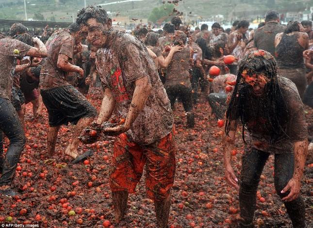 Những hình ảnh đẹp của lễ hội cà chua ở Colombia - anh 9