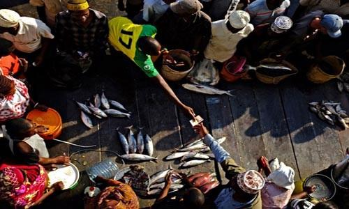 Địa điểm du lịch những tín đồ hải sản nên tới thăm - anh 2