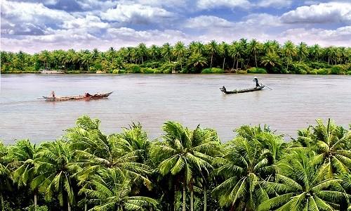 Điểm danh những đặc sản ở xứ dừa - anh 1