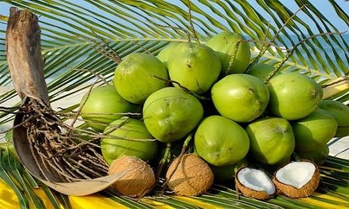 Điểm danh những đặc sản ở xứ dừa - anh 2