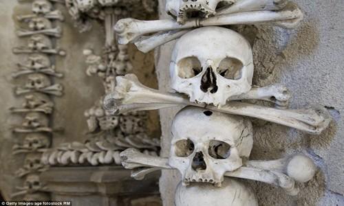Rợn tóc gáy thăm nhà thờ xương người ở Séc - anh 12