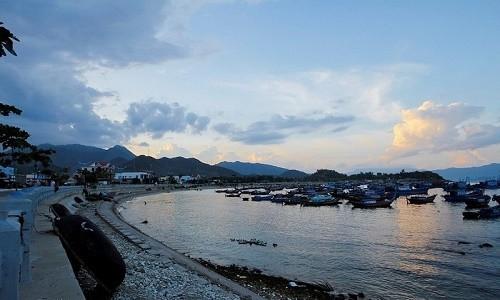 Ghé thăm cảng cá lớn nhất miền Nam Trung Bộ - anh 10