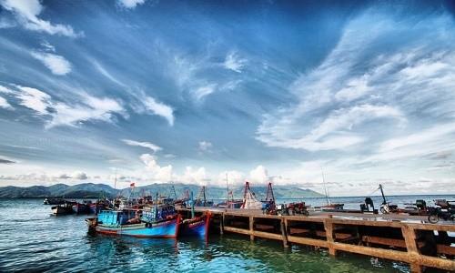 Ghé thăm cảng cá lớn nhất miền Nam Trung Bộ - anh 3