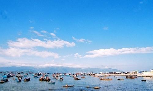 Ghé thăm cảng cá lớn nhất miền Nam Trung Bộ - anh 4