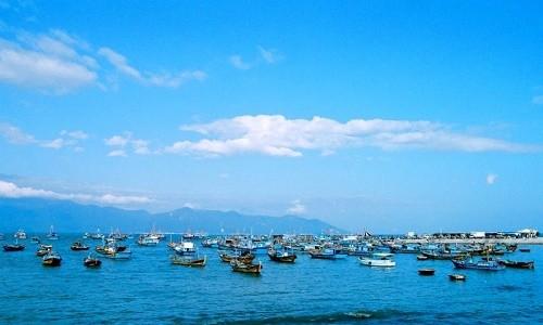 Ghé thăm cảng cá lớn nhất miền Nam Trung Bộ - anh 5