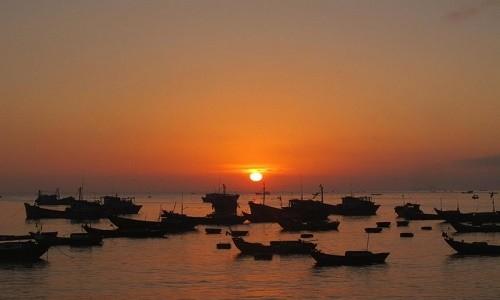 Ghé thăm cảng cá lớn nhất miền Nam Trung Bộ - anh 8