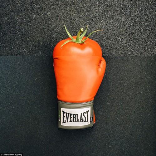 Bộ ảnh ghép độc lạ từ thực phẩm gây sốt mạng - anh 4