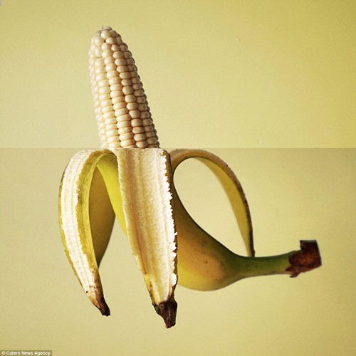 Bộ ảnh ghép độc lạ từ thực phẩm gây sốt mạng - anh 5