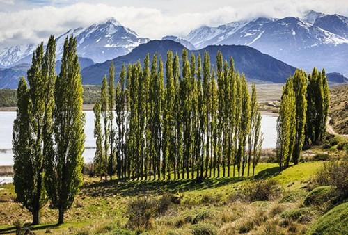 9 khu bảo tồn quốc gia mới đẹp nhất thế giới - anh 9