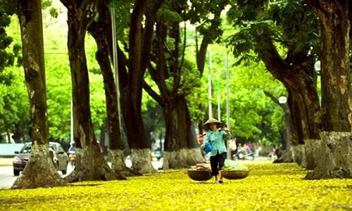 Những món quà vặt nổi tiếng vào tiết trời thu Hà Nội bạn nên thử - anh 1