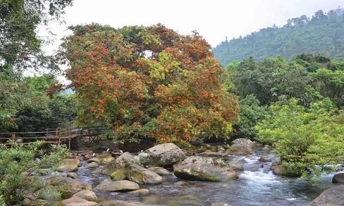 Suối Moọc - bản tình ca đẹp lung linh ở Quảng Bình - anh 3