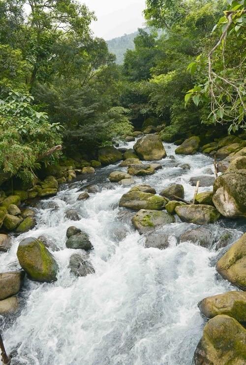 Suối Moọc - bản tình ca đẹp lung linh ở Quảng Bình - anh 5
